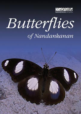 Butterflies of Nandankanan